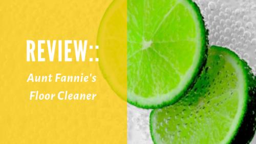 Review:: Aunt Fannie's Floor Cleaner